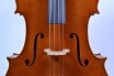 Cello 'Piatti'